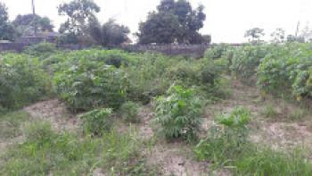 2 Plots of Land, Low Cost Estate, Oko Afo, Badagry, Lagos, Residential Land for Sale
