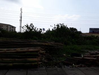 Strategically Located 4 Plots of Land, Facing The Express, Between Jakande and Ologolo, Opposite Osapa Junction, Lekki Expressway, Lekki, Lagos, Commercial Land for Rent