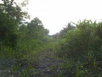 1 Plots of Land with 5 Shops, Alagbado, Dada Area, Ilorin East, Kwara, Land for Sale