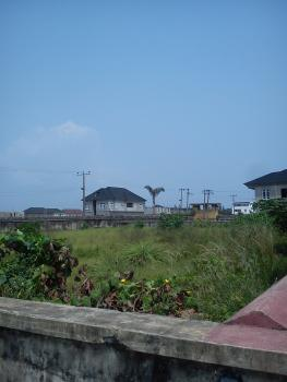 5 Acres of Land for Sale at Gaskiya College Road, Badia-ijora , Very Close to  Wharf ., Gaskiya College Road, Badia-ijora , Very Close to  Wharf ., Ijora, Apapa, Lagos, Commercial Land for Sale