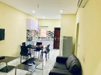 Luxury Furnished 2 Bedroom Flat for Rent Off Niger Street, Parkview, Ikoyi, Lagos ₦3,500,000 per Annum, Parkview, Parkview, Ikoyi, Lagos, Flat for Rent