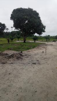 Hot!!! Two Acres of Gazetted Dry Land, Perfect for School/church/mini-estate/hotel, Ibeju Lekki, Lagos, Mixed-use Land for Sale