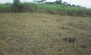 Virgin Plots of Land, Eleko, Ibeju Lekki, Lagos, Mixed-use Land for Sale