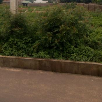 Available for Sale. 2500sqm(dr E), Mabuchi, Abuja, Residential Land for Sale