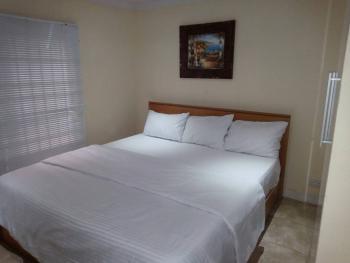 Luxury 2 Bedroom Apartment, Victoria Island (vi), Lagos, Flat Short Let