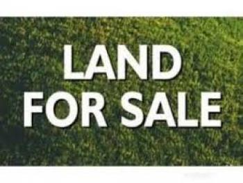 300 Acres of Land, Fidiwo and Gbangbade Village, Along Lagos-ibadan Expressway, Mowe Ofada, Ogun, Land for Sale