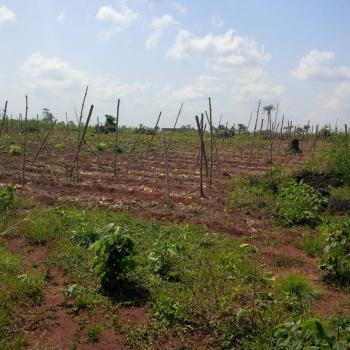 Farm Lands Near Lagos, Sagamu, Ogun, Industrial Land for Sale