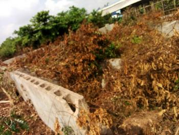 Full Plot of Land with 4 Bedroom Foundation, Mowo Kekere Area, Agric, Ikorodu, Lagos, Residential Land for Sale