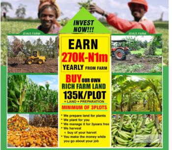 Genuine Farm Land, Ogere, Abule Ojo, Ikenne, Ogun, Mixed-use Land for Sale
