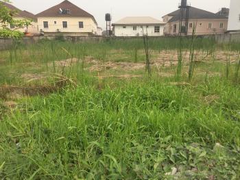 2300sqm in Asokoro Extension, Asokoro District, Abuja, Land for Sale