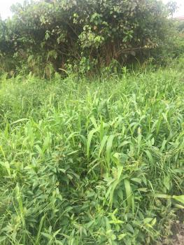 1,389sqm (corner Piece) Land, Admiralty Way, Lekki Phase 1, Lekki, Lagos, Land for Sale