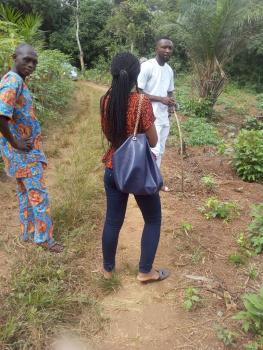 Arable Farm Land, Obafemi Owode, Ogun, Mixed-use Land for Sale