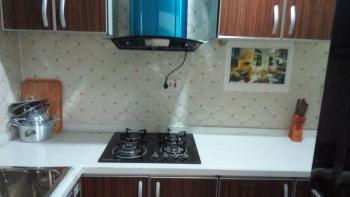 Self Contained and Two Bedroom Apartments, Opebi, Opebi, Ikeja, Lagos, Self Contained (studio) Flat Short Let