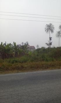 Undeveloped Land, Along Eku Warri Road, Oha., Okpe, Delta, Mixed-use Land for Sale