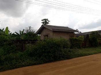 Land, Fagbile Estate Road, Isheri-ijegun, Ijegun, Ikotun, Lagos, Mixed-use Land for Sale