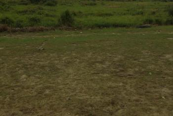 Lands Available (100 By 100), Murtala Mohammed Highway, Calabar, Cross River, Land for Sale