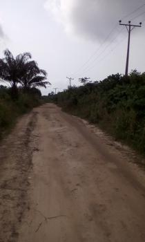 Land for Agricultural Or Commercial Purpose, Omu/egansoyindo, Via Ketu, Epe, Lagos, Commercial Land for Sale