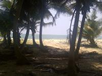 11 Acres Private Luxury Beach Land From Express to Ocean. Oppo. Dangote. Lekki Free Trade Zone, Origanrigan, Lekki Free Trade Zone, Ibeju Lekki, Lagos, Mixed-use Land for Sale