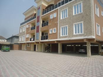 Luxury 3 Bedrooms Flat with Excellent Facilities, Igbo Efon, Lekki, Lagos, Flat for Rent