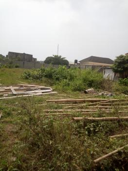 916sqm Dry Land in Best Location, Lekki Phase 2, Lekki, Lagos, Residential Land for Sale