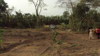 Virgin Lands, Magboro, Ogun, Land For Sale