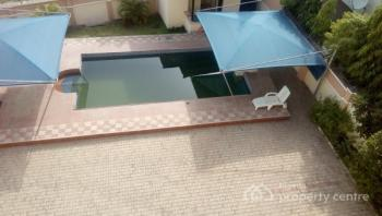Lavishly and Tastefully Fully Serviced 5 Bedroom  Ambassadorial  Duplex with 2 Rooms Guest Chalet, Swimming Pool, Maitama District, Abuja, Detached Duplex for Rent