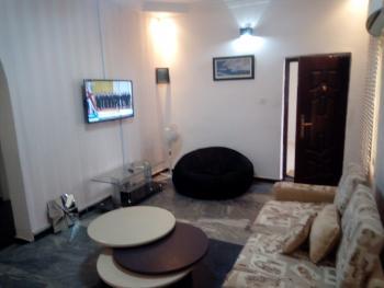 Furnished & Services 2 Bedroom Apartment, Jabi, Abuja, Flat for Rent