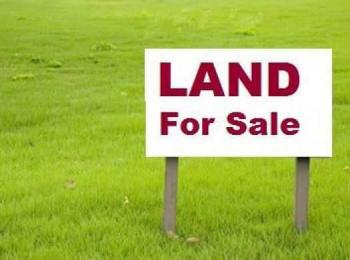 10,000sqm Landed Property  Very Good for Commercial  Purpose (facing Road), Oniru, Victoria Island (vi), Lagos, Commercial Land for Sale