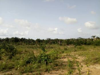 1000 Square Meter, Banana Island, Ikoyi, Lagos, Commercial Land for Sale