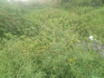 300300 Square Meter of Land, Located in Marwa, Ikate Elegushi, Lekki, Lagos, Industrial Land for Sale