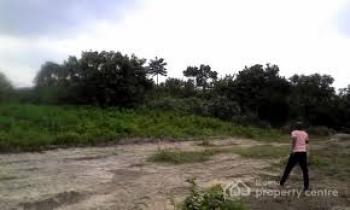 1 Plot of Land, Okpuhe Farmland, Umuona Chokota, Etche, Rivers, Residential Land for Sale