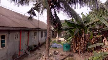 2 Plots of Land, Oyigbo, Rivers, Mixed-use Land for Sale