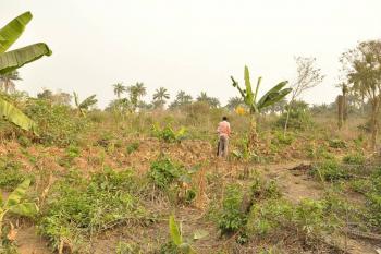6 Plots of Land, Orisunbare Street, Behind Espi Concrete Block Industry, Owode Ede, Osogbo, Osun, Residential Land for Sale