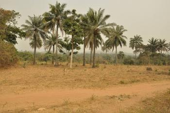 One Acre, Kegbe Area, After Agric, Close to Owode Ede Road, Osogbo, Osun, Mixed-use Land for Sale