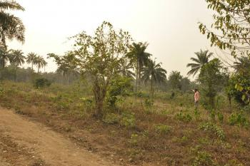 1 Acre, Along Owode Ede Road, Osogbo, Osun, Industrial Land for Sale