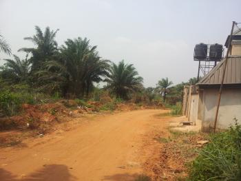 a Fast  Developing Estate, Onitsha Owerri Expressway, Idemili, Anambra, Commercial Land for Sale