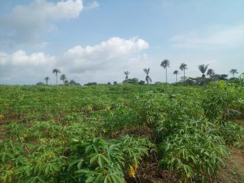 Acres of Farmland in Odeda Local Govt. Ogun State, Alabata Road, Via Funaab, Odeda, Ogun, Mixed-use Land for Sale