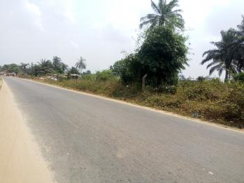 Well Located, Dry and Firm Land, Off Idoro Road, Uyo, Akwa Ibom, Mixed-use Land for Sale