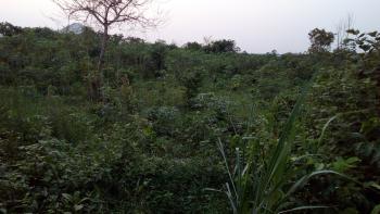 Acre of Land, Alawun Village, Odofin,  Beside Hillcitypark Estate, Rccg  New Auditorium,, Simawa, Ogun, Mixed-use Land for Sale