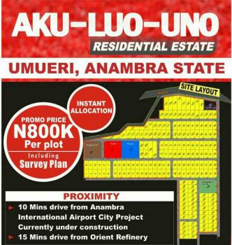 Affordable Land at a Strategic Location, Anambra, Anambra, Mixed-use Land for Sale