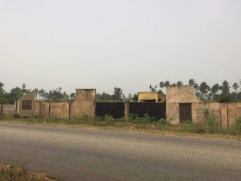 Large Expanse of Land of 8 Acres, Delsu Road, Abraka, Ethiope East, Delta, Land for Sale
