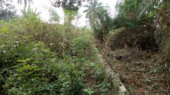 Dry and Well Located 2.748 Acres of Land, Owode/ado-odo Road, Ado-odo/ota, Ogun, Mixed-use Land for Sale