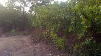 1700sqm with C of O in Diplomatic Zone, Behind Ecowas Quarters, Katampe Extension, Katampe, Abuja, Residential Land for Sale