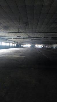 90,000 Square Feet Warehouse, Ilupeju Industrail Area, Ilupeju Estate, Ilupeju, Lagos, Warehouse for Rent