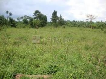 1 Hectare of Land, Along Ilesha-owo, Beside Frsc Hq Office in Akure and Opposite Nnpc Mega Filling Station/akure Auto Mart, Akure, Ondo, Industrial Land for Sale