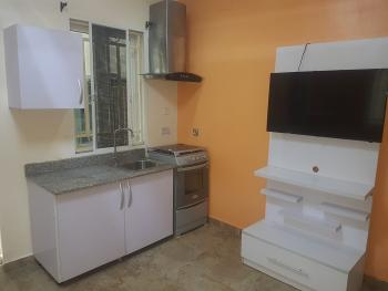 Awesome Brand New Fully Serviced Mini Flat, Razak Eletu Street, Osapa, Lekki, Lagos, Mini Flat for Rent