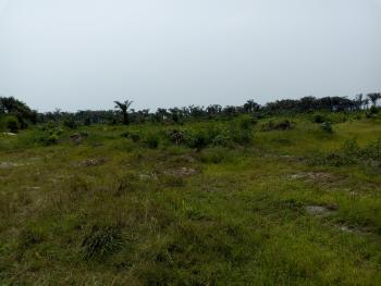 Acres of Dry and Firm Land, Behind Amen Estate, Eleko, Ibeju Lekki, Lagos, Mixed-use Land for Sale