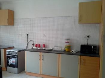 Luxury 3 Bedroom Service Duplex, Dideolu, Oniru, Victoria Island (vi), Lagos, House for Rent