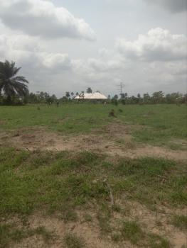 1 Plot of Land in a Fast Developing Neighborhood, Igbo-etche Road, By Elements Junction, Rumuokwurusi, Port Harcourt, Rivers, Residential Land for Sale