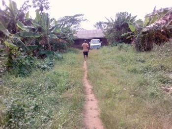 Poultry Farms, Ajegunle Road, Ado-odo/ota, Ogun, Commercial Property for Sale